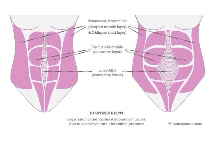 ceinture abdominale est elle efficace